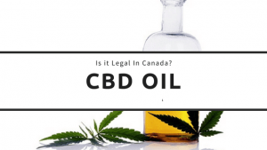 is cbd legal in Canada